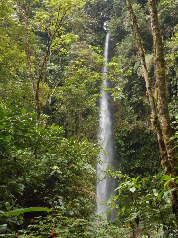 The Hola Vida Waterfall