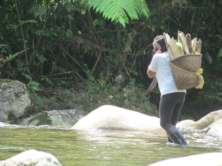 People carry heavy bundles with hand-woven baskets with a strap resting on their forehead