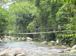 Time to repair the hanging bridge