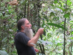 Chris Canaday teaches us about medicinal plants