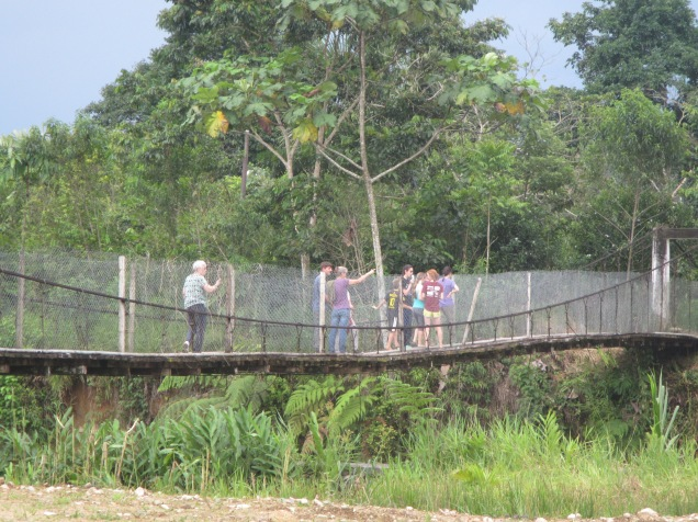 Our first day in the rain forest -- one of several bridges we crossed